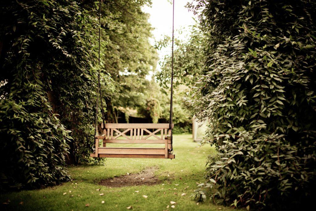 gazebo-against-trees-334978